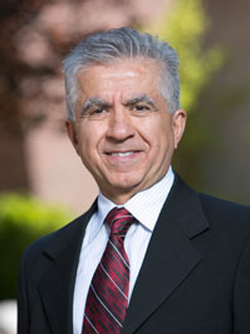 Saiid Saiidi