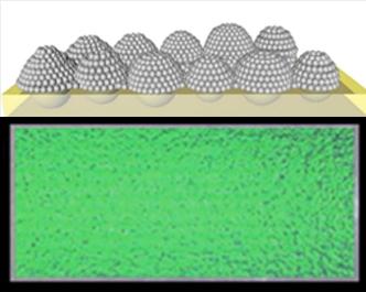 Bug eye structure inspires reflective coatings improvements