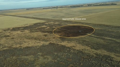 Keystone spill area