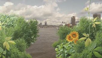London Mayor Scraps Plan For Garden Bridge