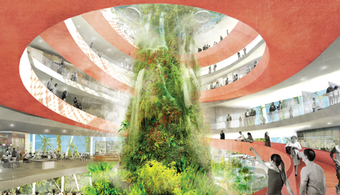 Design Aims to Reshape FL Beachfront