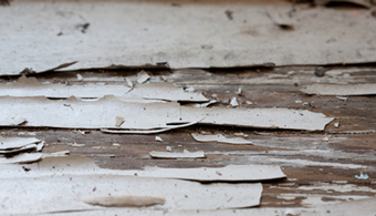 CA Lead Paint Ballot Measure Scrapped