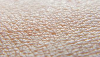 Team Designs Self-Healing Coating Inspired by Skin