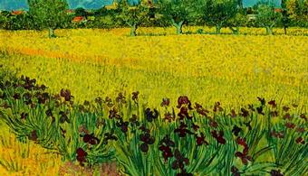 Color : PaintSquare