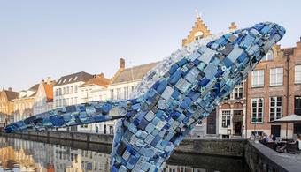 Plastic Whale 'Skyscraper' Breaches in Belgium