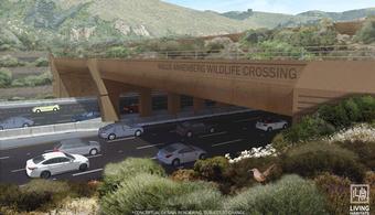 Wildlife Bridge to Break Ground in 2022